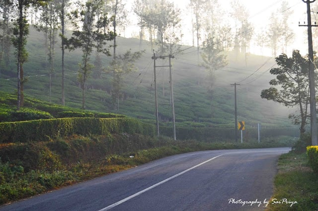 "A Ride to ""Wayanad"" ..GOD'S OWN COUNTRY"