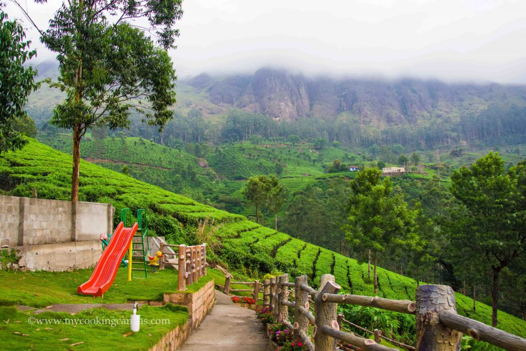 Luxury Experience in Munnar